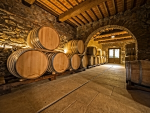 tour, winery, wine, taste, celebrate, dinner, occassion