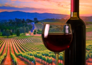 vineyard, wine, tour, package, event, planner, winery, tasting, touring